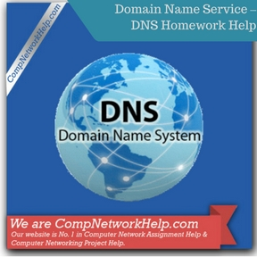 Domain Name Service – DNS Homework Help