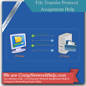 File Transfer Protocol (FTP) Assignment Help