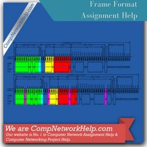 Frame Format Assignment Help