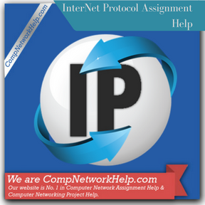 InterNet Protocol Assignment Help