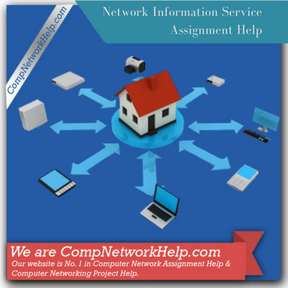 Network Information Service Assignment Help