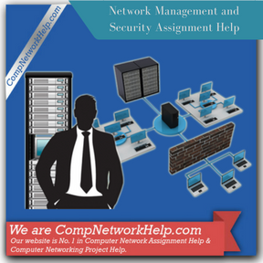 Network Management and Security Assignment Help