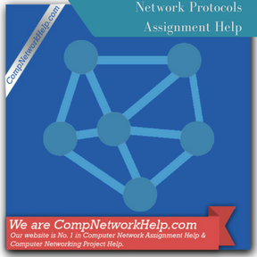Network Protocols Assignment Help