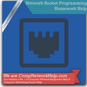 Network Socket Programming Homework Help