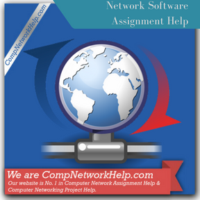 Network Software Assignment Help