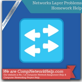 Networks Layer Problems Homework Help
