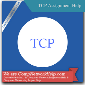TCP Assignment Help