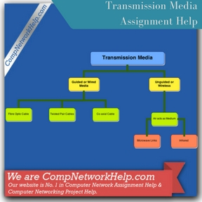 transmission media computer network help computer networking  transmission media assignment help