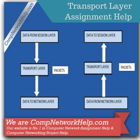 Transport Layer Assignment Help