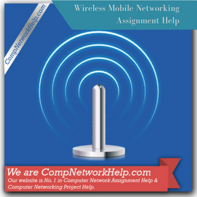 Wireless Mobile Networking Assignment Help