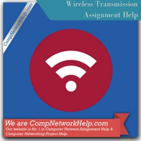 Wireless Transmission Assignment Help